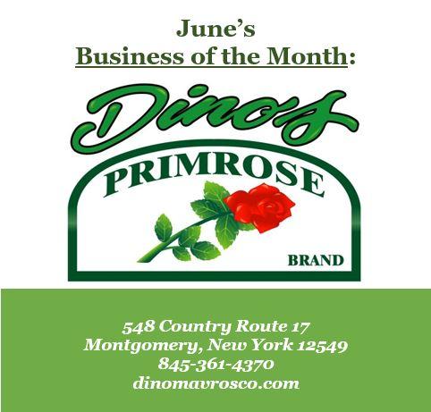 Dino's Primrose